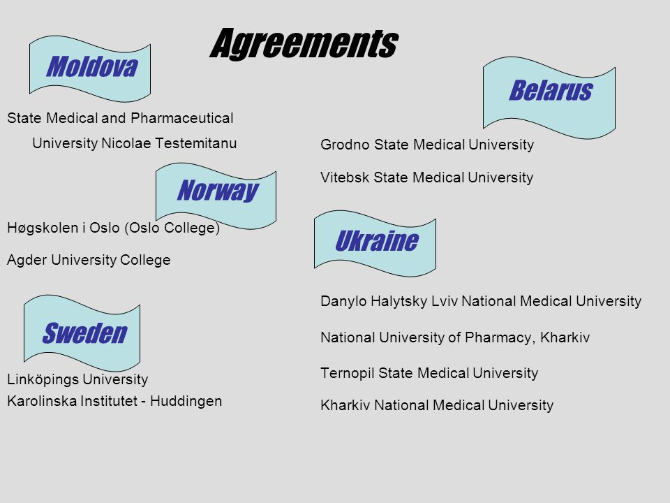 Agreements State Medical and Pharmaceutical University Nicolae Testemitanu Høgskolen i Oslo (Oslo College) Agder University College Linköpings Univers