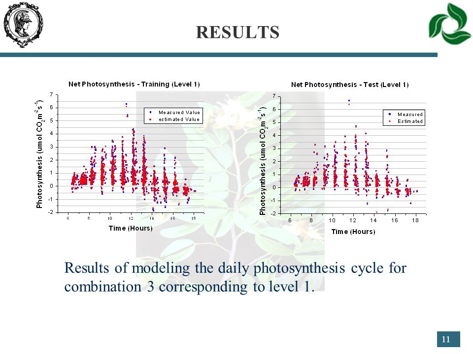 11 RESULTS Results of modeling the daily photosynthesis cycle for combination 3 corresponding to level 1.