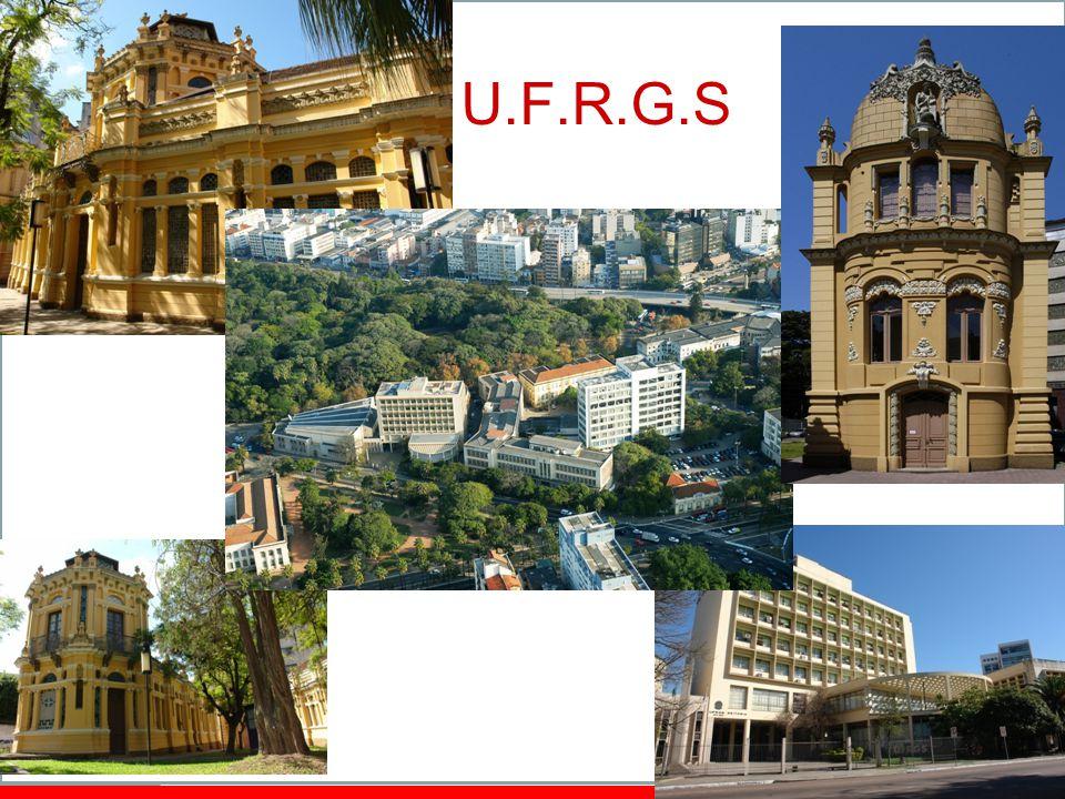 The UFRGS – basic data ~30.000 students / 18.000 undergrad Teaching staff: ~2.000 65 undergrad courses 64 MSc./PhD programs