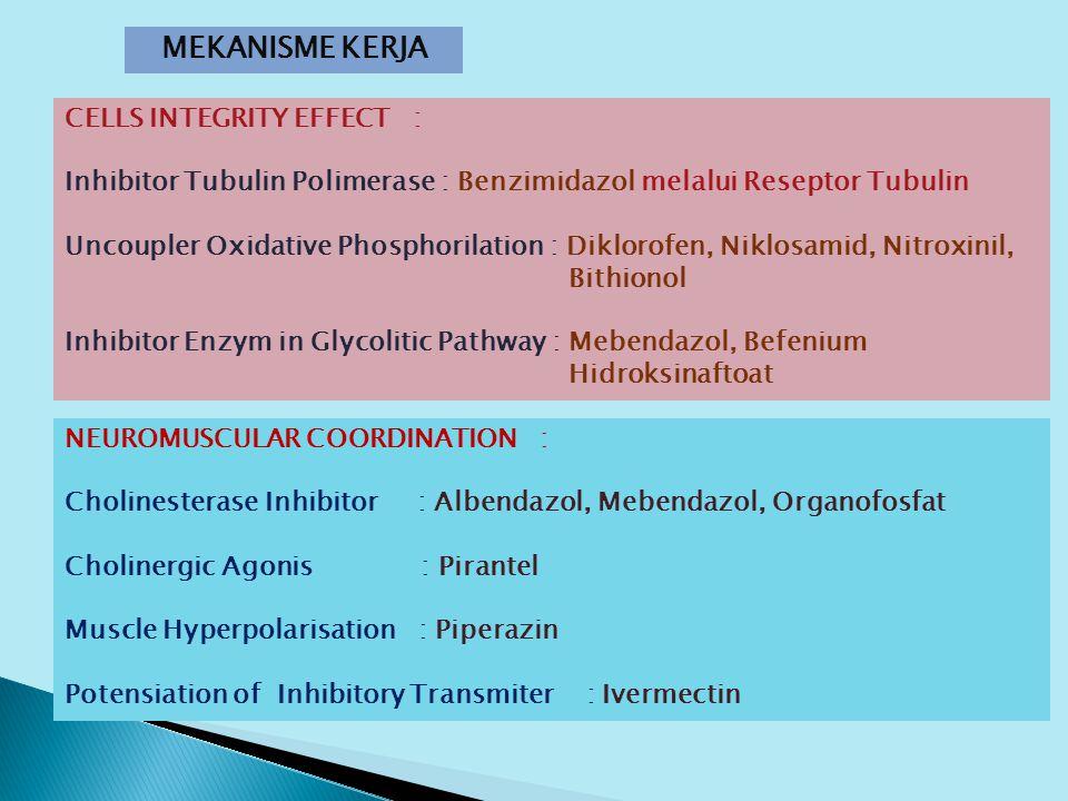 MEKANISME KERJA CELLS INTEGRITY EFFECT : Inhibitor Tubulin Polimerase : Benzimidazol melalui Reseptor Tubulin Uncoupler Oxidative Phosphorilation : Diklorofen, Niklosamid, Nitroxinil, Bithionol Inhibitor Enzym in Glycolitic Pathway : Mebendazol, Befenium Hidroksinaftoat NEUROMUSCULAR COORDINATION : Cholinesterase Inhibitor : Albendazol, Mebendazol, Organofosfat Cholinergic Agonis : Pirantel Muscle Hyperpolarisation : Piperazin Potensiation of Inhibitory Transmiter : Ivermectin