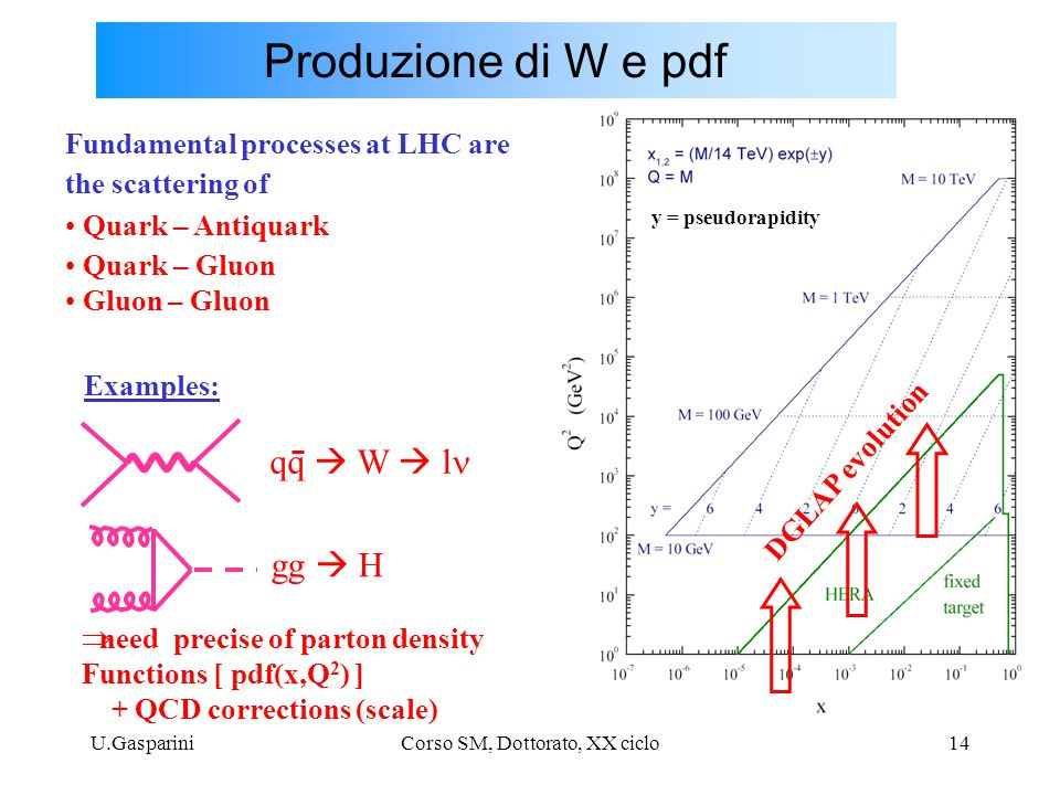 U.GaspariniCorso SM, Dottorato, XX ciclo14 Produzione di W e pdf Fundamental processes at LHC are the scattering of Quark – Antiquark Quark – Gluon Gluon – Gluon gg  H  need precise of parton density Functions [ pdf(x,Q 2 ) ] + QCD corrections (scale) Examples: qq  W  l y = pseudorapidity DGLAP evolution