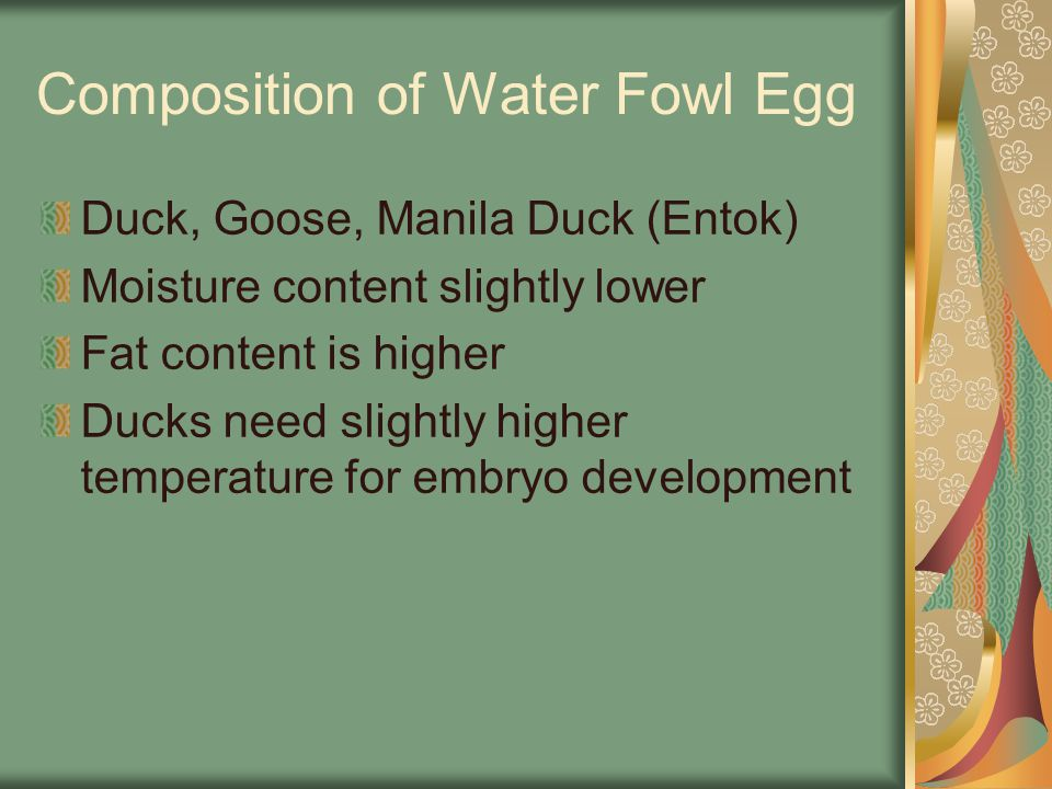 Composition of Water Fowl Egg Duck, Goose, Manila Duck (Entok) Moisture content slightly lower Fat content is higher Ducks need slightly higher temper