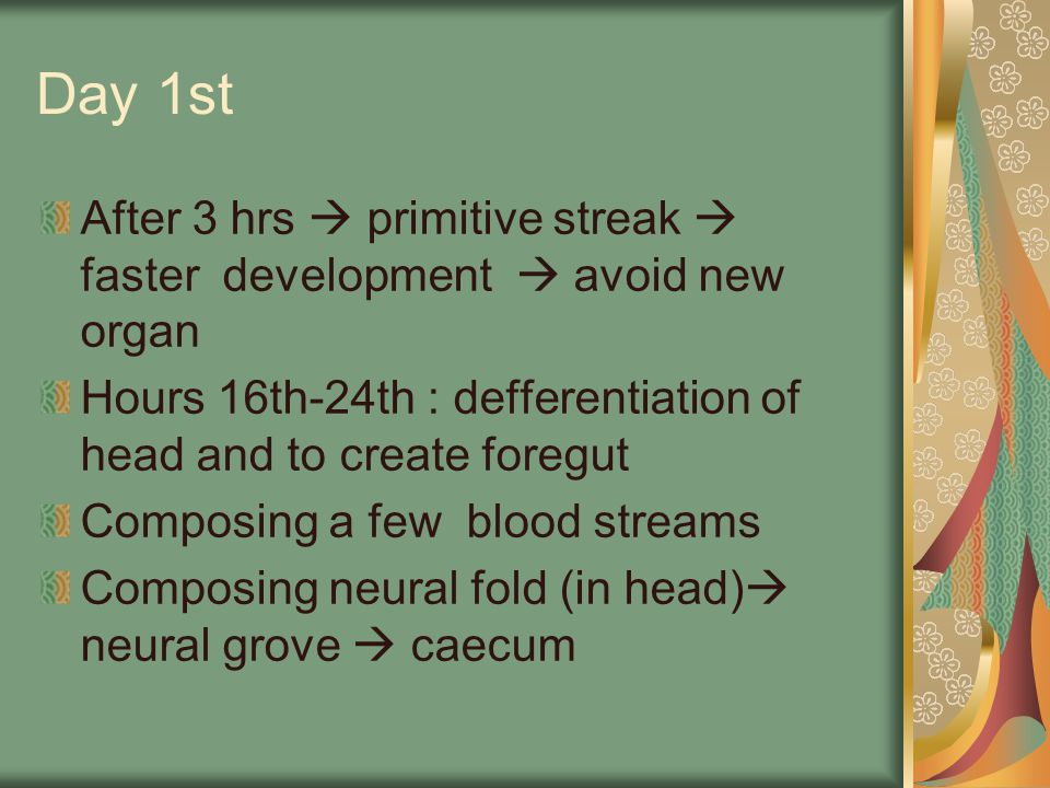 Day 1st After 3 hrs  primitive streak  faster development  avoid new organ Hours 16th-24th : defferentiation of head and to create foregut Composin