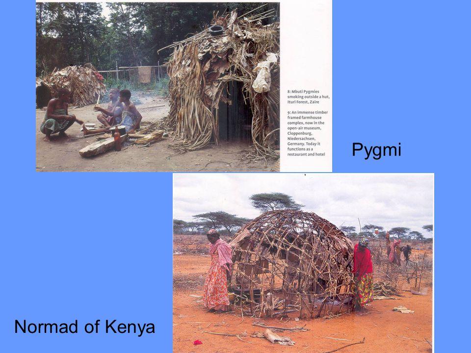Pygmi Normad of Kenya