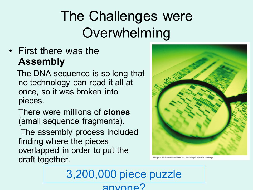 The Challenges were Overwhelming First there was the Assembly The DNA sequence is so long that no technology can read it all at once, so it was broken into pieces.