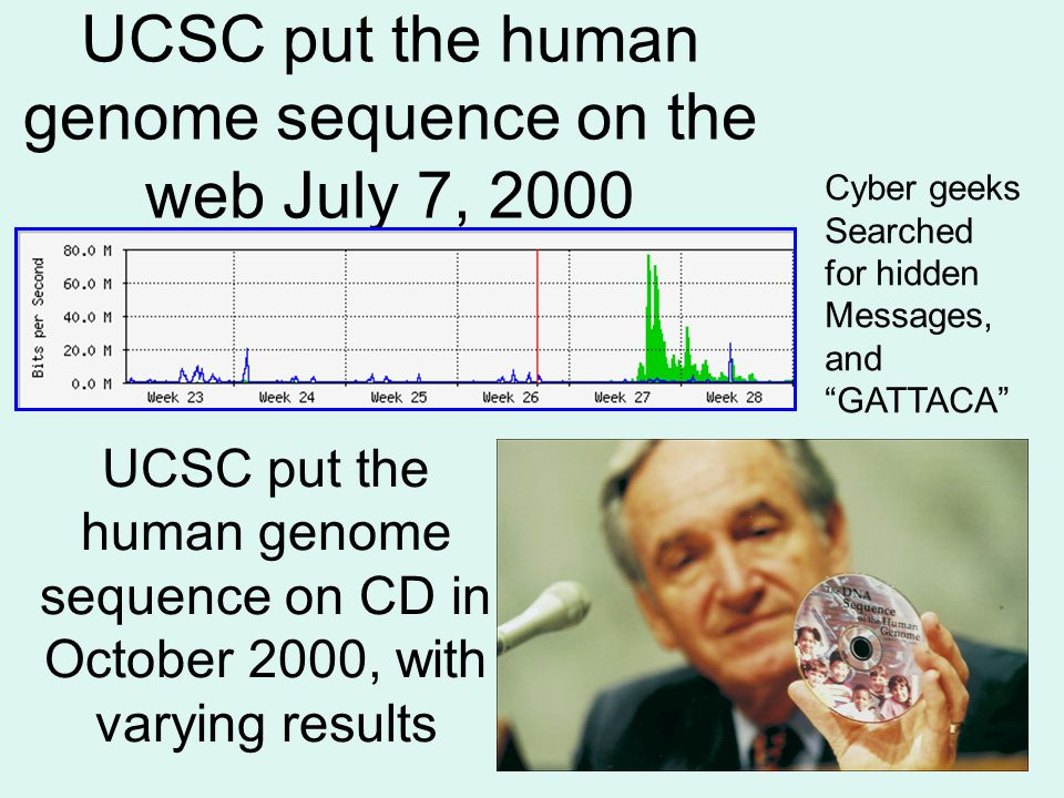 UCSC put the human genome sequence on the web July 7, 2000 UCSC put the human genome sequence on CD in October 2000, with varying results Cyber geeks Searched for hidden Messages, and GATTACA