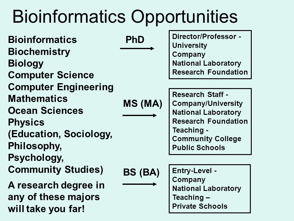 Bioinformatics Opportunities Entry-Level - Company National Laboratory Teaching – Private Schools BS (BA) MS (MA) Research Staff - Company/University National Laboratory Research Foundation Teaching - Community College Public Schools PhD Director/Professor - University Company National Laboratory Research Foundation Bioinformatics Biochemistry Biology Computer Science Computer Engineering Mathematics Ocean Sciences Physics (Education, Sociology, Philosophy, Psychology, Community Studies) A research degree in any of these majors will take you far!