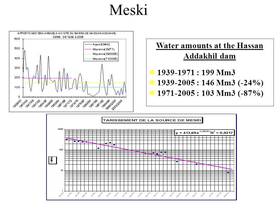 Water amounts at the Hassan Addakhil dam 1939-1971 : 199 Mm3 1939-2005 : 146 Mm3 (-24%) 1971-2005 : 103 Mm3 (-87%) Meski