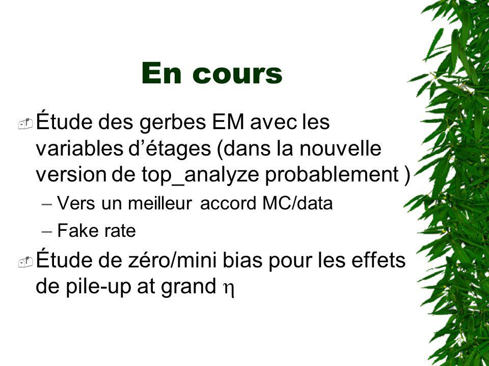 En cours  Étude des gerbes EM avec les variables d'étages (dans la nouvelle version de top_analyze probablement ) –Vers un meilleur accord MC/data –Fake rate  Étude de zéro/mini bias pour les effets de pile-up at grand 