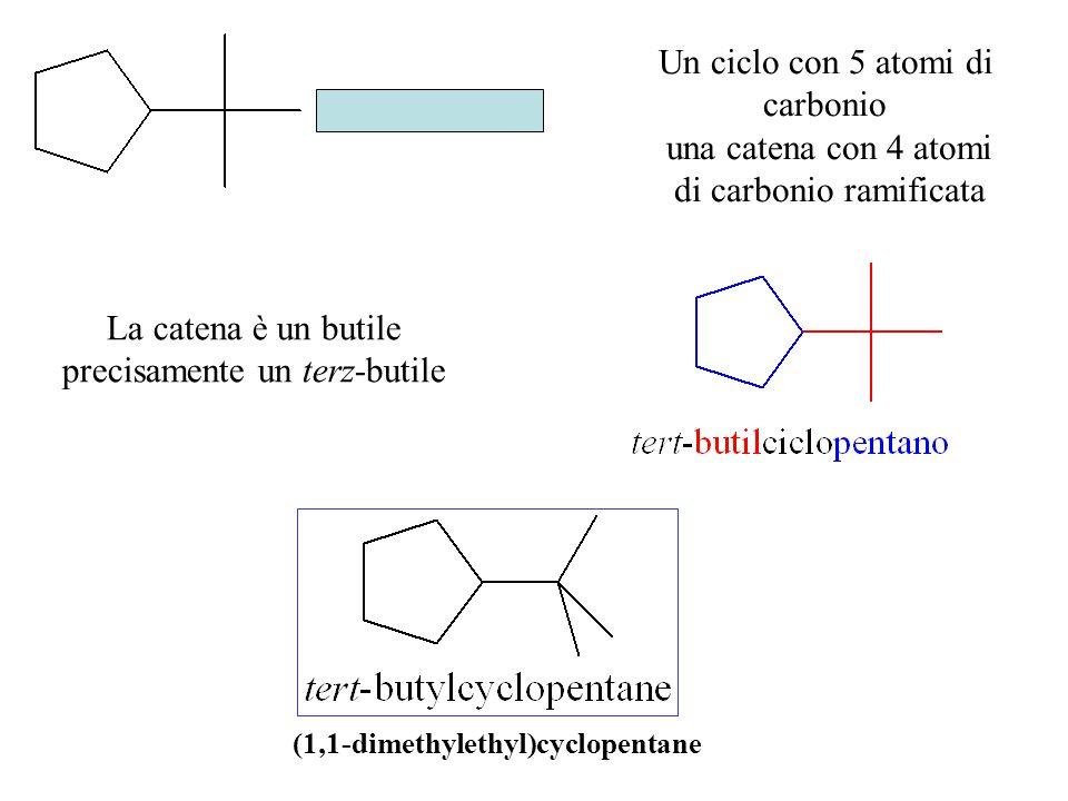 Un ciclo con 5 atomi di carbonio una catena con 4 atomi di carbonio ramificata La catena è un butile precisamente un terz-butile (1,1-dimethylethyl)cyclopentane