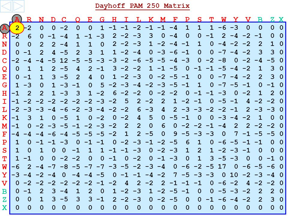 P 1 0 -3 0 0 -2 -3 -2 -5 6 1 0 -6 -5 0 0 S 1 0 1 0 0 0 1 -3 0 -2 -3 1 2 1 -2 -3 0 0 0 T 1 0 0 -2 0 0 0 -2 0 -3 0 1 3 -5 -3 0 0 0 W -6 2 -4 -7 -8 -5 -7 -3 -5 -2 -3 -4 0 -6 -2 -5 17 0 -6 -5 -6 0 Y -3 -4 -2 -4 0 -5 0 -4 2 7 -5 -3 0 10 -2 -3 -4 0 V 0 -2 -2 4 2 2 0 -6 -2 4 0 B 0 2 3 -4 1 2 0 1 -2 -3 1 -2 -5 0 0 -5 -3 -2 2 2 0 Z 0 0 1 3 -5 3 3 2 -2 -3 0 -2 -5 0 0 -6 -4 -2 2 3 0 X 0 0 0 0 0 0 0 0 0 0 0 0 0 0 0 0 0 0 0 0 0 0 0 A R N D C Q E G H I L K M F P S T W V B Z X Y A 2 0 0 0 0 1 -2 -4 1 1 1 -6 0 0 0 0 -3 N 0 0 2 2 -4 1 1 0 2 -2 -3 1 -2 -4 1 0 -4 -2 2 1 0 D 0 2 4 -5 2 3 1 1 -2 -4 0 -3 -6 0 0 -7 -2 3 3 0 -4 C -2 -4 -5 12 -5 -3 -2 -6 -5 -4 -3 0 -2 -8 -2 -4 -5 0 0 Q 0 1 1 2 4 2 3 -2 1 -5 0 -2 -5 -2 1 3 0 -4 E 0 1 3 -5 2 4 0 1 -2 -3 0 -2 -5 1 0 -7 -2 2 3 0 -4 G 1 -3 0 1 0 5 -2 -3 -4 -2 -3 -5 1 0 -7 0 0 -5 H 2 2 1 -3 3 1 -2 6 0 0 -3 -2 1 2 0 0 I -2 -3 -2 5 2 1 0 -5 4 -2 0 L -2 -3 -4 -6 -2 -3 -4 -2 2 6 4 2 2 -3 -2 2 -3 0 K 3 1 0 -5 1 0 -2 0 -3 5 0 -5 0 0 -3 -2 1 0 0 -4 M 0 -2 -3 -5 -2 -3 -2 2 4 0 6 0 -4 2 -2 0 -5 0 F -4 -6 -4 -5 -2 1 2 -5 0 9 -3 0 7 Dayhoff PAM 250 Matrix R -2 6 0 -4 1 -3 2 -2 -3 3 0 -4 0 0 2 -2 0 0 -4