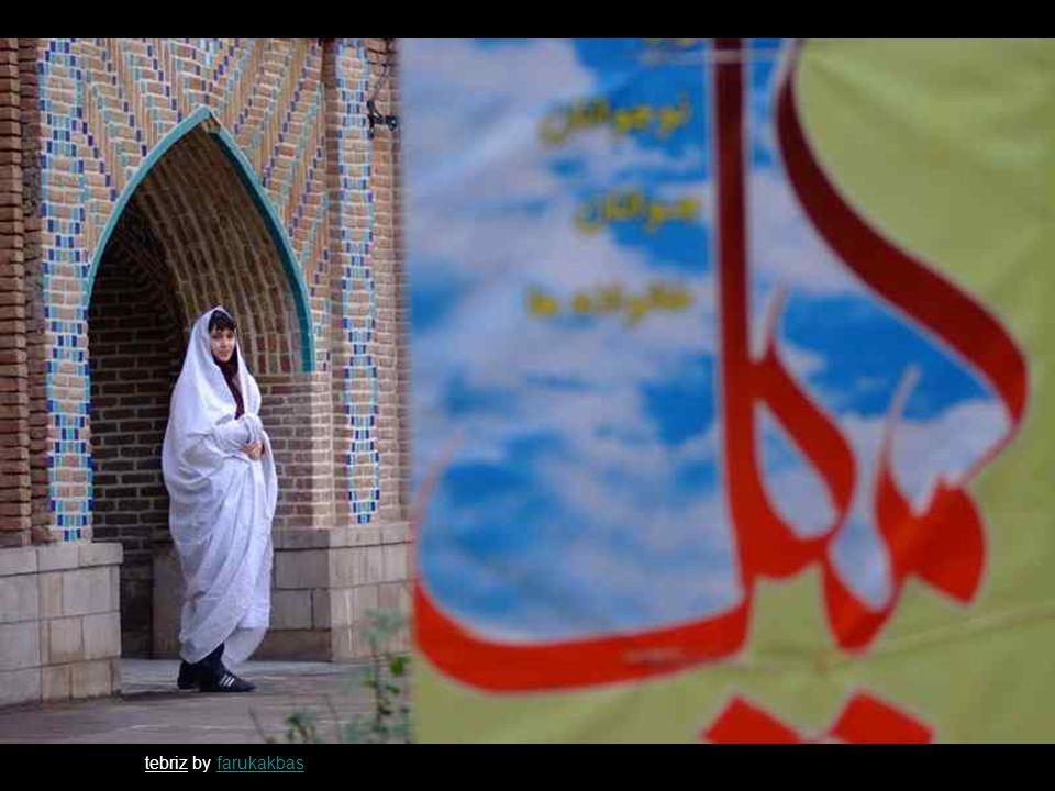 colleague by siamakjafarisiamakjafari iran by BARBACABARBACA