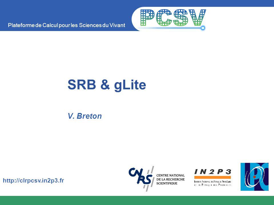 Plateforme de Calcul pour les Sciences du Vivant http://clrpcsv.in2p3.fr SRB & gLite V. Breton