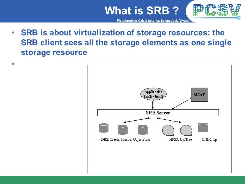 Plateforme de Calcul pour les Sciences du Vivant What is SRB .