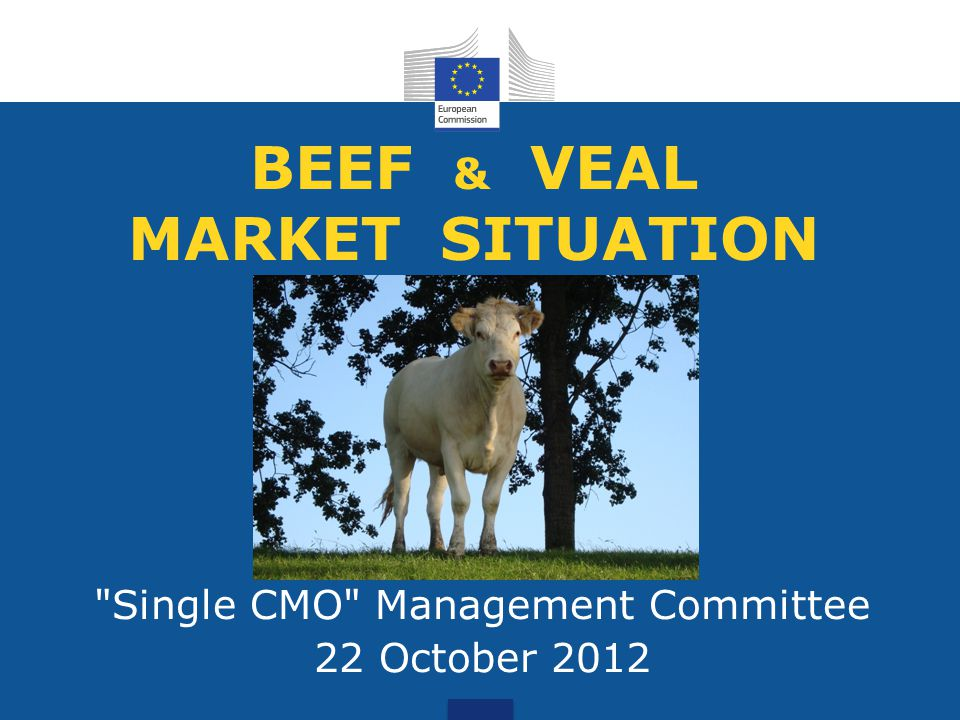 BEEF & VEAL MARKET SITUATION Single CMO Management Committee 22 October 2012