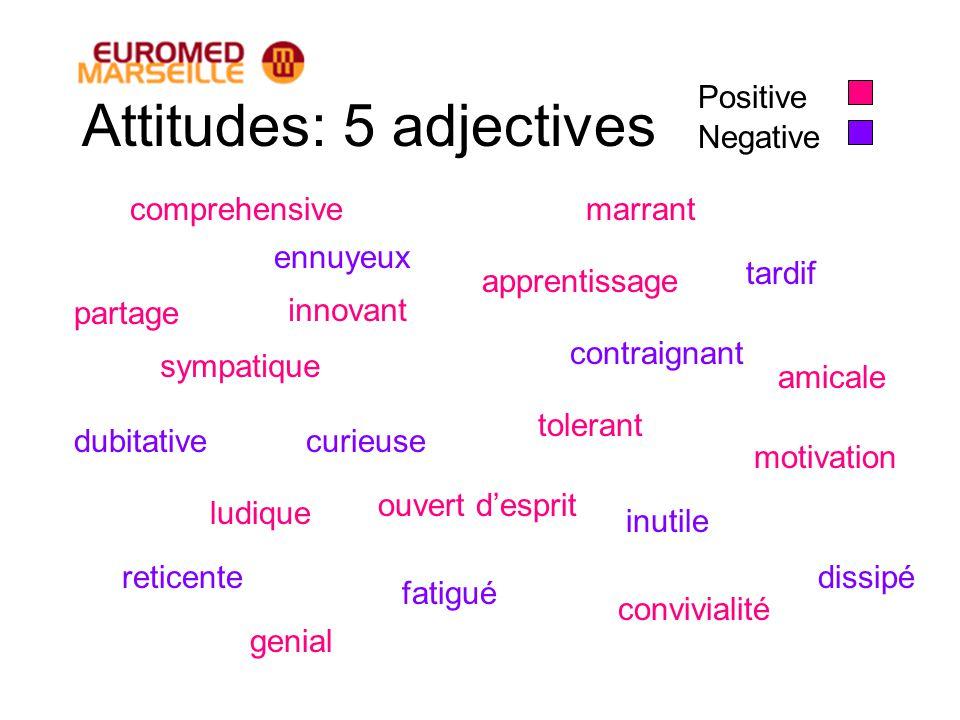 Attitudes: 5 adjectives sympatique innovant ennuyeux curieuse tolerant contraignant ludique partage marrant amicale dissipé inutile genial fatigué com