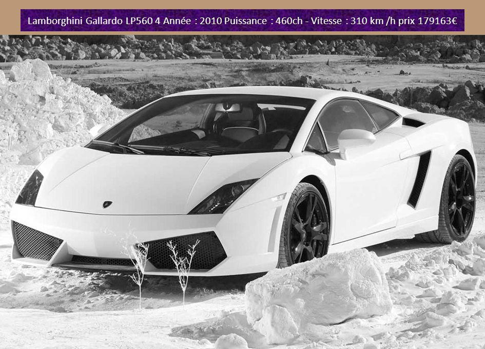 Lamborghini Gallardo 005