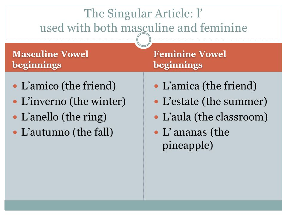 Masculine Vowel beginnings Feminine Vowel beginnings L'amico (the friend) L'inverno (the winter) L'anello (the ring) L'autunno (the fall) L'amica (the