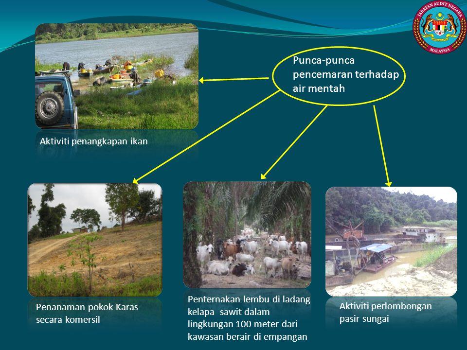 Penanaman pokok Karas secara komersil Penternakan lembu di ladang kelapa sawit dalam lingkungan 100 meter dari kawasan berair di empangan Aktiviti per