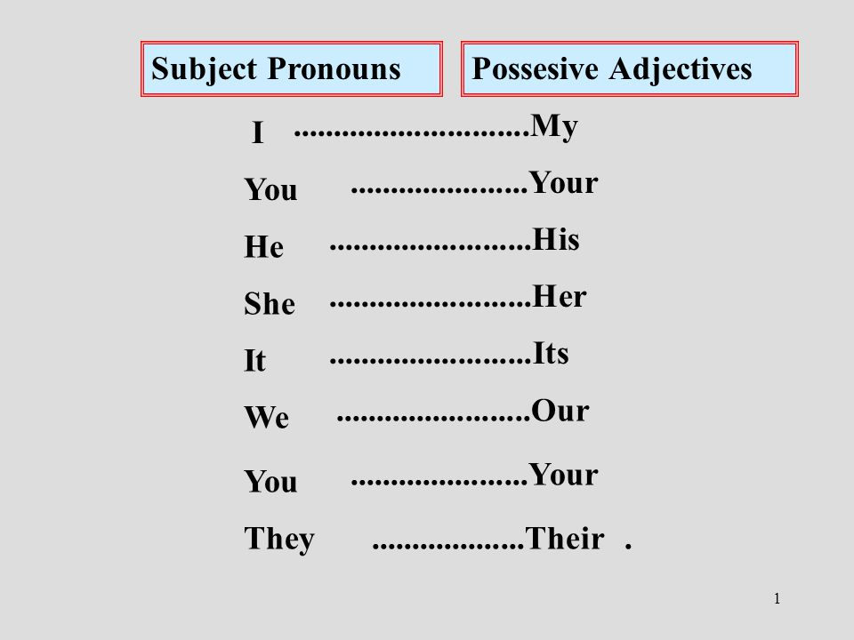 1 Subject PronounsPossesive Adjectives I You He She It We You They.............................My......................Your.........................His.........................Her.........................Its........................Our......................Your...................Their.