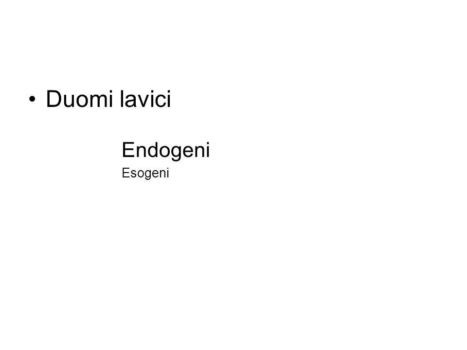 Duomi lavici Endogeni Esogeni