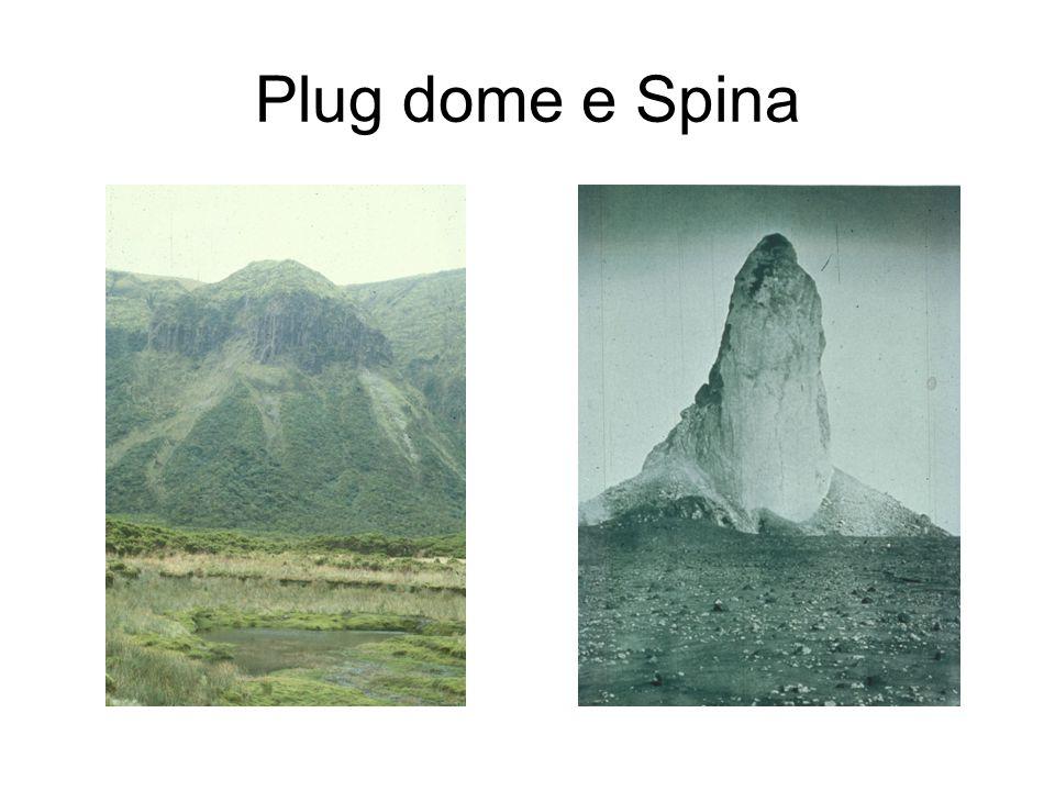 Plug dome e Spina