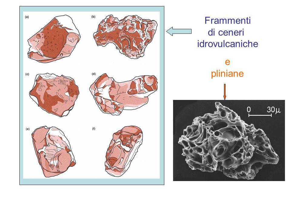 Frammenti di ceneri idrovulcaniche e pliniane