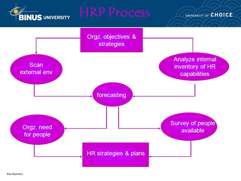 Bina Nusantara HRP Process Orgz.