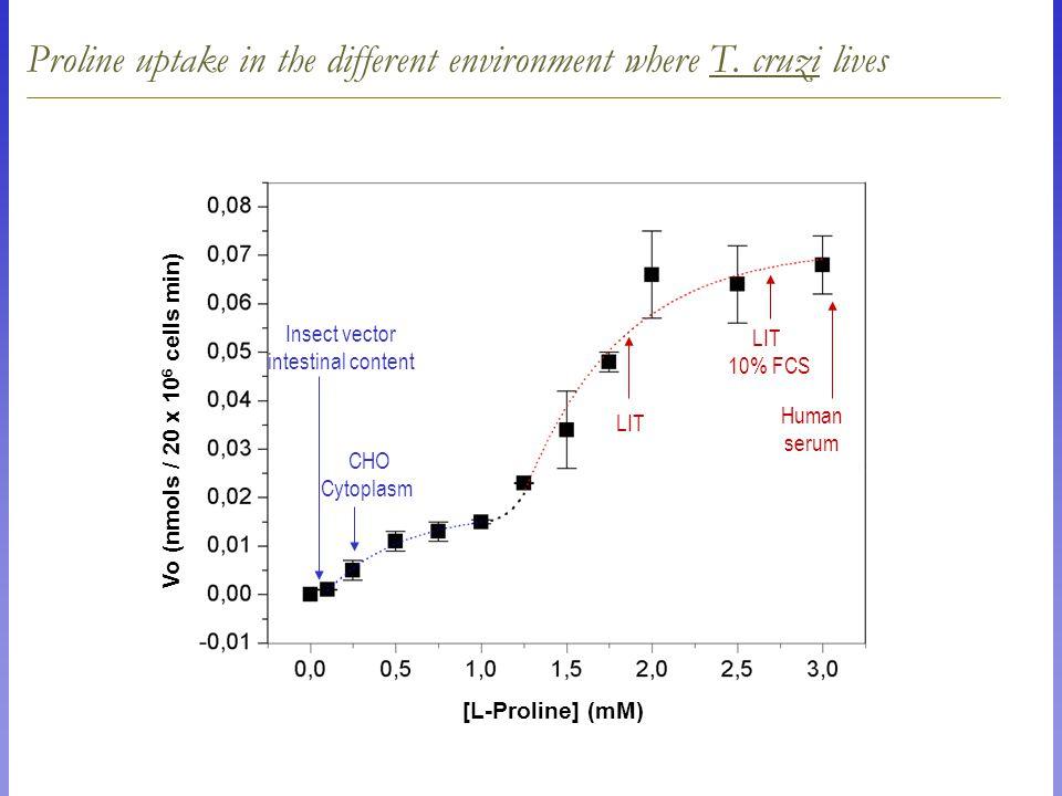 Transporte de L-Prolina Proline uptake in the different environment where T.