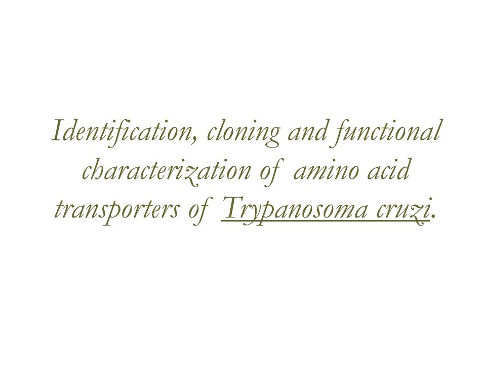 Identification, cloning and functional characterization of amino acid transporters of Trypanosoma cruzi.