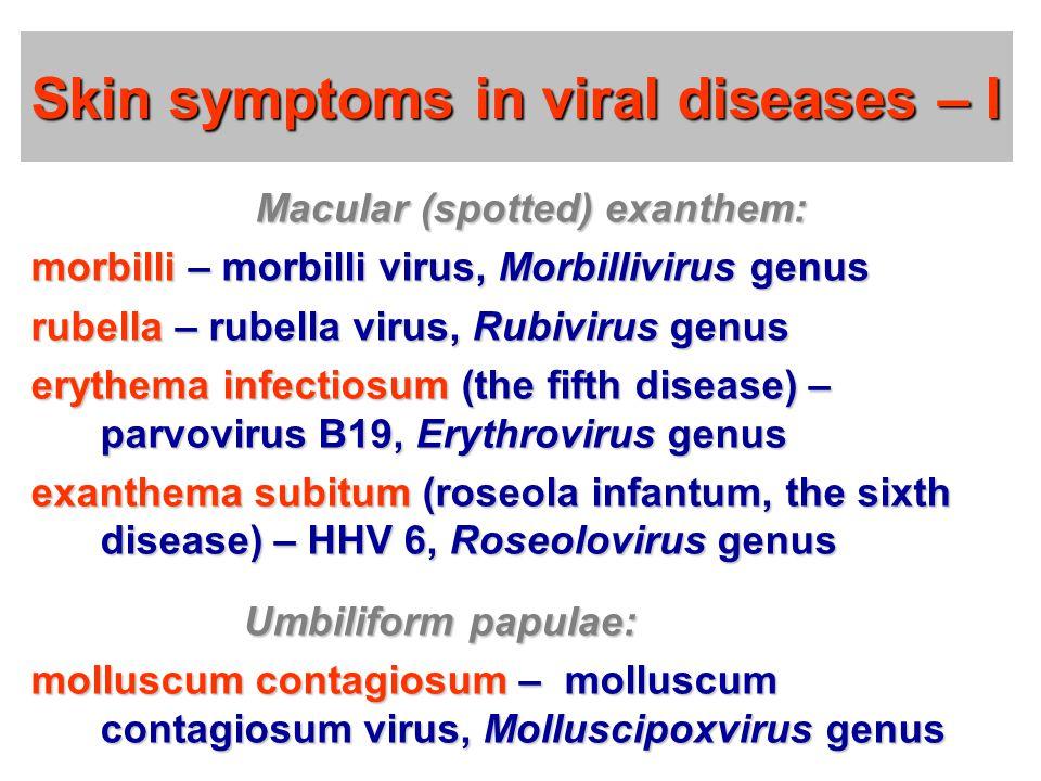 Skin symptoms in viral diseases – I Macular (spotted) exanthem: morbilli – morbilli virus, Morbillivirus genus rubella – rubella virus, Rubivirus genus erythema infectiosum (the fifth disease) – parvovirus B19, Erythrovirus genus exanthema subitum (roseola infantum, the sixth disease) – HHV 6, Roseolovirus genus Umbiliform papulae: Umbiliform papulae: molluscum contagiosum – molluscum contagiosum virus, Molluscipoxvirus genus