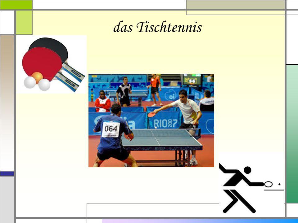 das Tischtennis