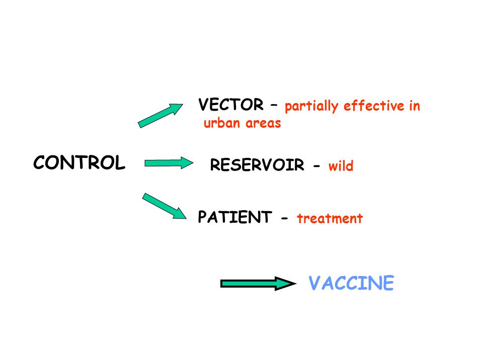 RESERVOIR - wild PATIENT - treatment VACCINE CONTROL VECTOR – partially effective in urban areas