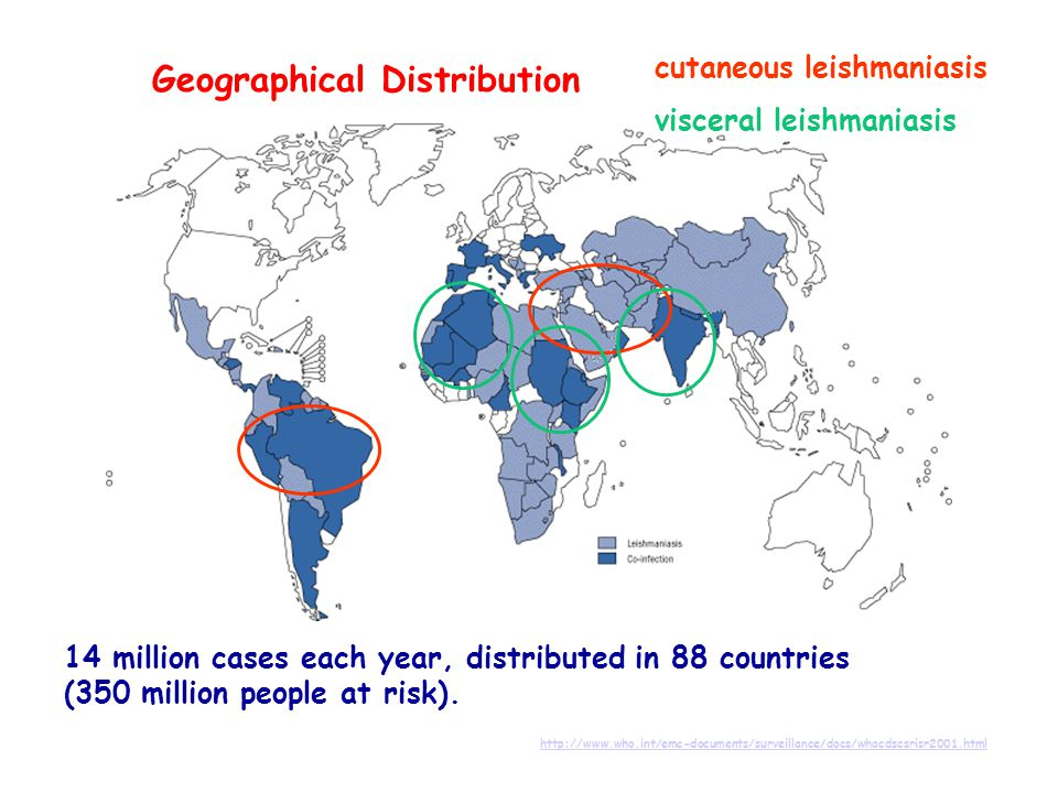 Geographical Distribution http://www.who.int/emc-documents/surveillance/docs/whocdscsrisr2001.html 14 million cases each year, distributed in 88 countries (350 million people at risk).