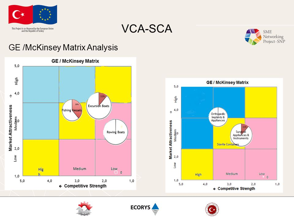 VCA-SCA GE /McKinsey Matrix Analysis