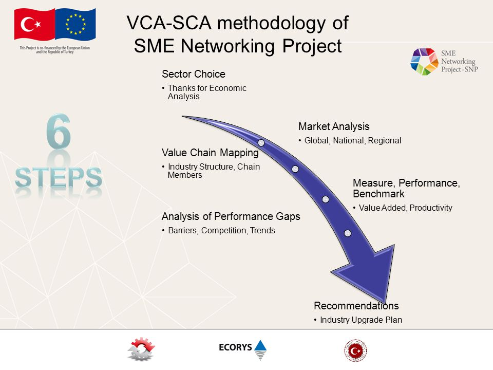 VCA-SCA methodology of SME Networking Project  Mapping Actors and Product Flows in the Value Chain  Analyzing Costs, Margins and Competitiveness  Identifying Marketing Options and Responses to Market Requirements and Quality Standards  Analyzing Governance and Linkages  Analyzing Options for Development, Innovation and Upgrading