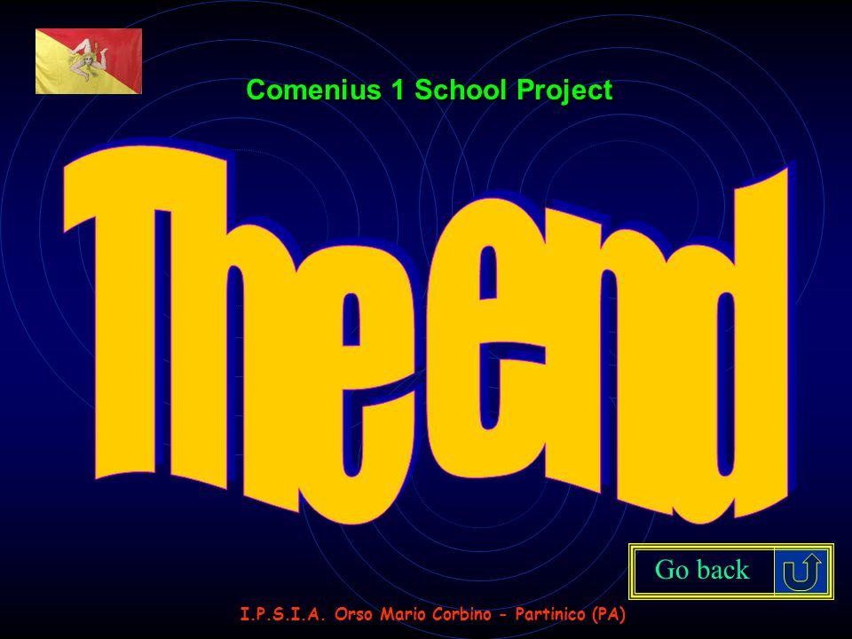 I.P.S.I.A. Orso Mario Corbino - Partinico (PA) Comenius 1 School Project Go back