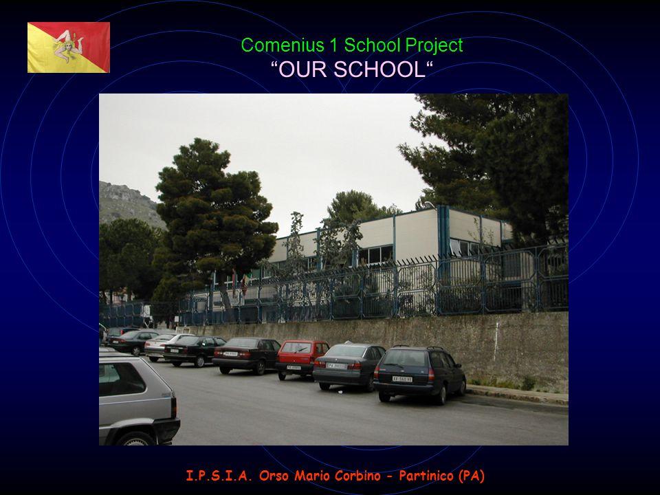 I.P.S.I.A. Orso Mario Corbino - Partinico (PA) OUR SCHOOL Comenius 1 School Project OUR SCHOOL