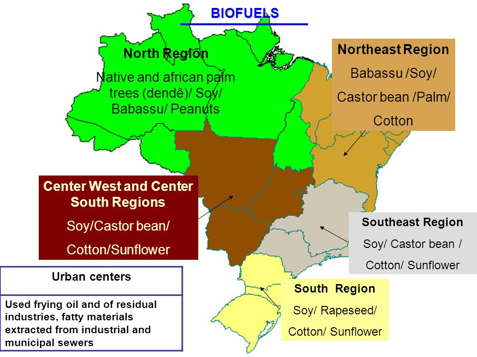 Urban centers Used frying oil and of residual industries, fatty materials extracted from industrial and municipal sewers North Region Native and african palm trees (dendê)/ Soy/ Babassu/ Peanuts Center West and Center South Regions Soy/Castor bean/ Cotton/Sunflower Southeast Region Soy/ Castor bean / Cotton/ Sunflower Northeast Region Babassu /Soy/ Castor bean /Palm/ Cotton South Region Soy/ Rapeseed/ Cotton/ SunflowerBIOFUELS