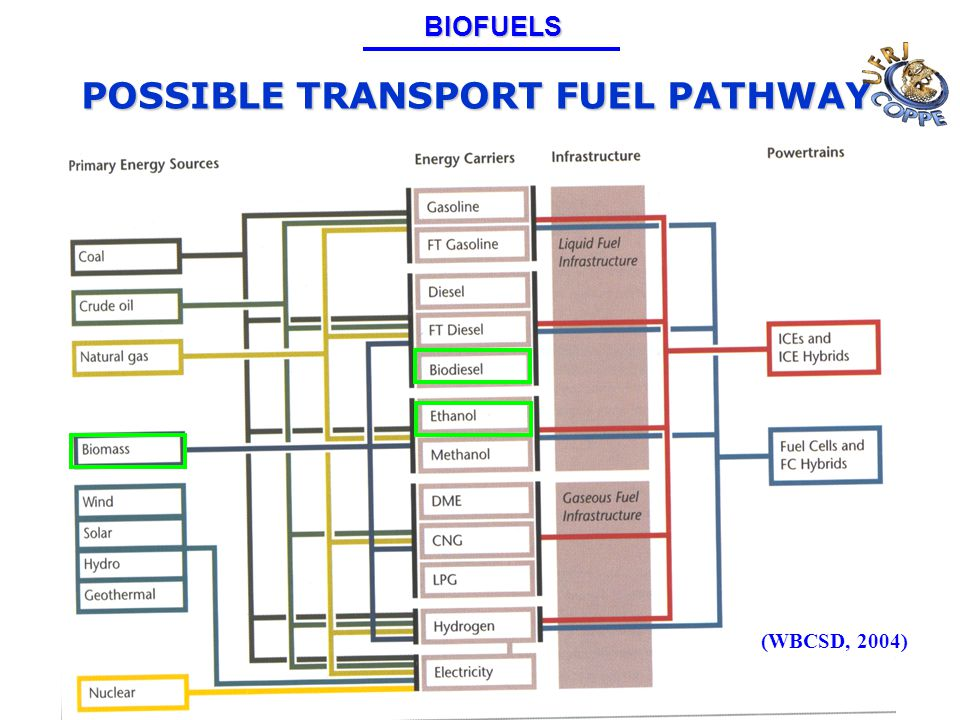 POSSIBLE TRANSPORT FUEL PATHWAY (WBCSD, 2004)BIOFUELS