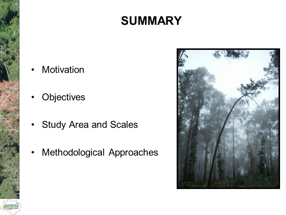 Motivation Objectives Study Area and Scales Methodological Approaches SUMMARY