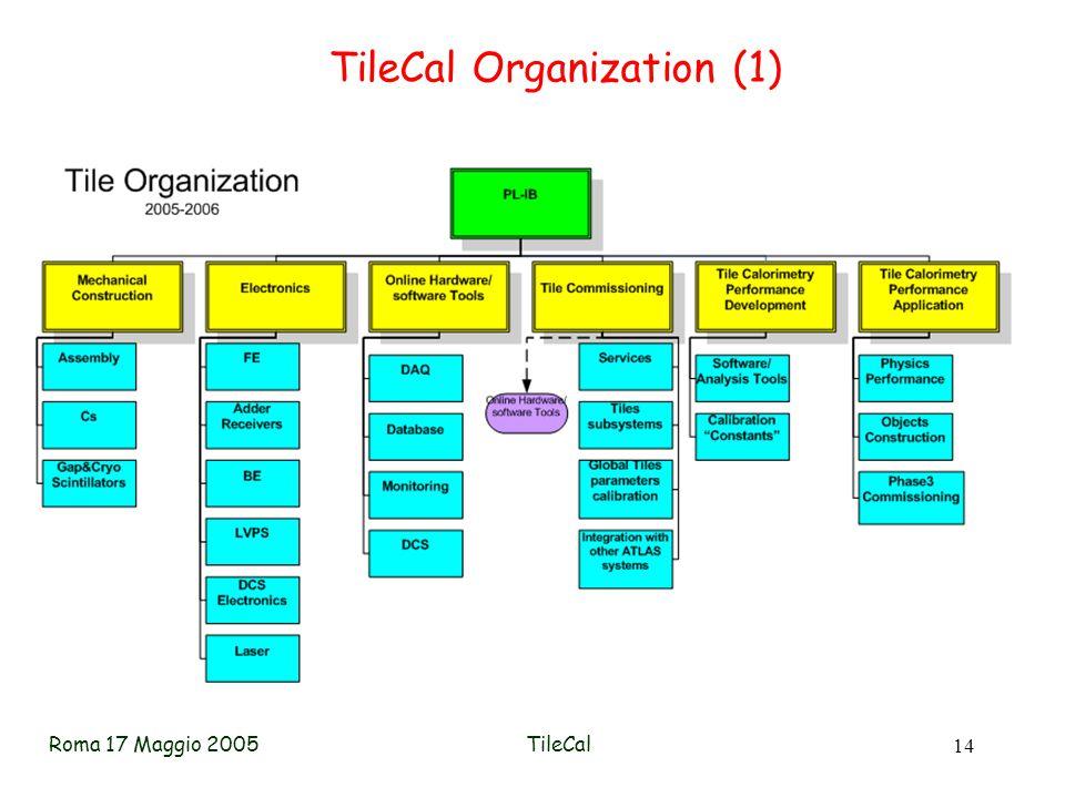 Roma 17 Maggio 2005TileCal 14 TileCal Organization (1)