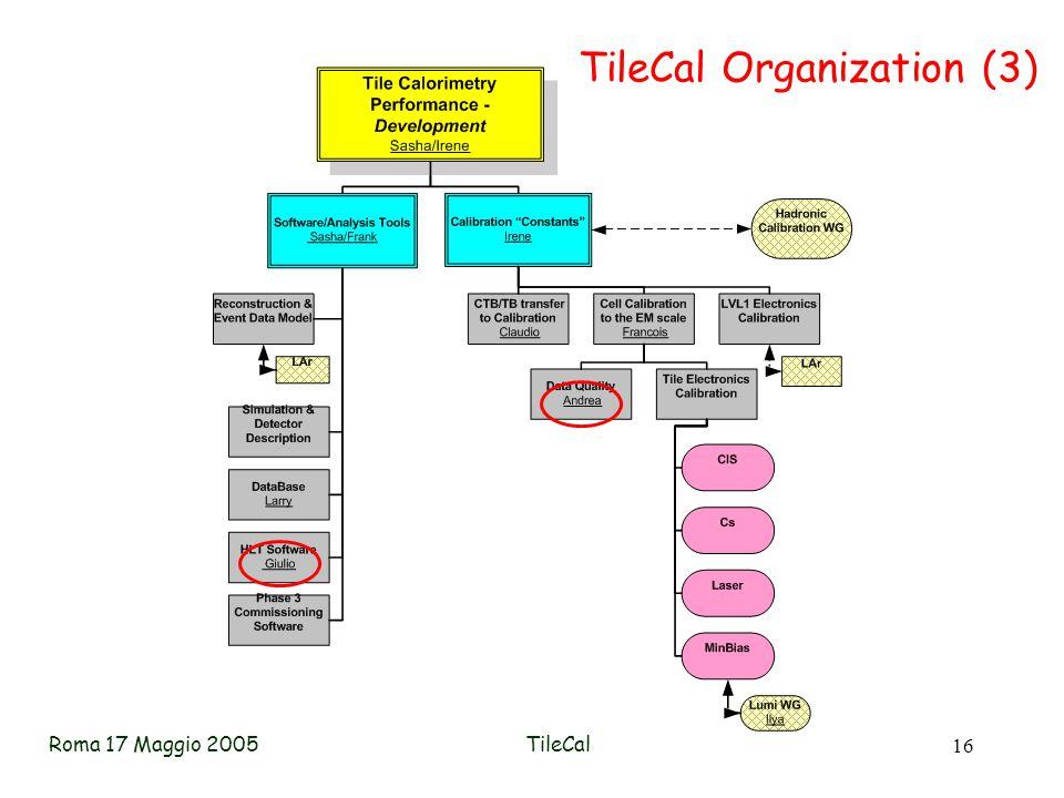 Roma 17 Maggio 2005TileCal 16 TileCal Organization (3)