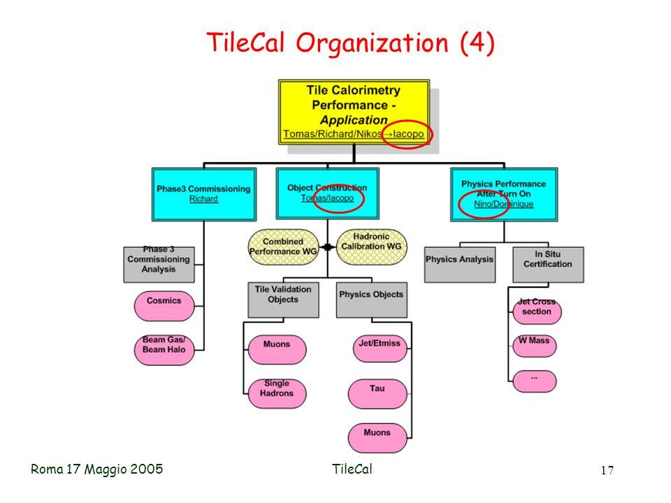 Roma 17 Maggio 2005TileCal 17 TileCal Organization (4)