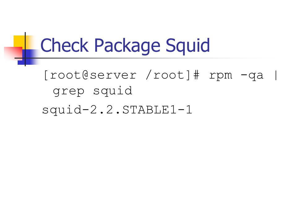 Check Package Squid [root@server /root]# rpm -qa | grep squid squid-2.2.STABLE1-1