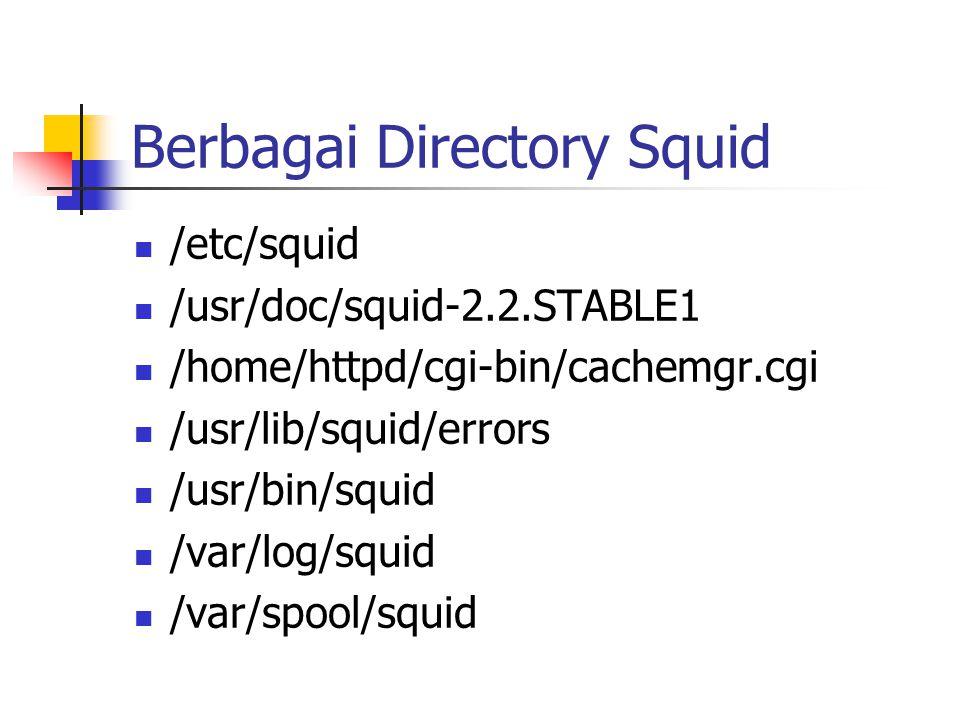 Berbagai Directory Squid /etc/squid /usr/doc/squid-2.2.STABLE1 /home/httpd/cgi-bin/cachemgr.cgi /usr/lib/squid/errors /usr/bin/squid /var/log/squid /var/spool/squid