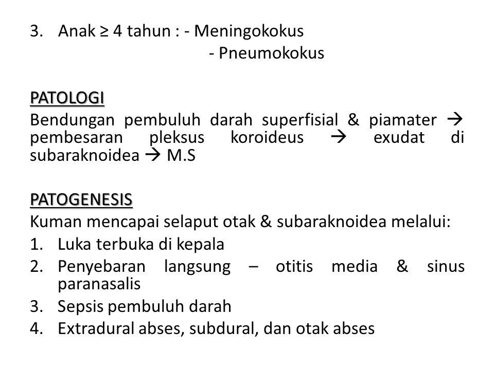 FAKTOR PREDISPOSISI 1.Sepsis 2.Kelainan imunologik 3.Shunting ventrikel 4.Fungsi lumbal & anestesi spinal 5.Infeksi parameningeal PENYEBAB MENINGITIS