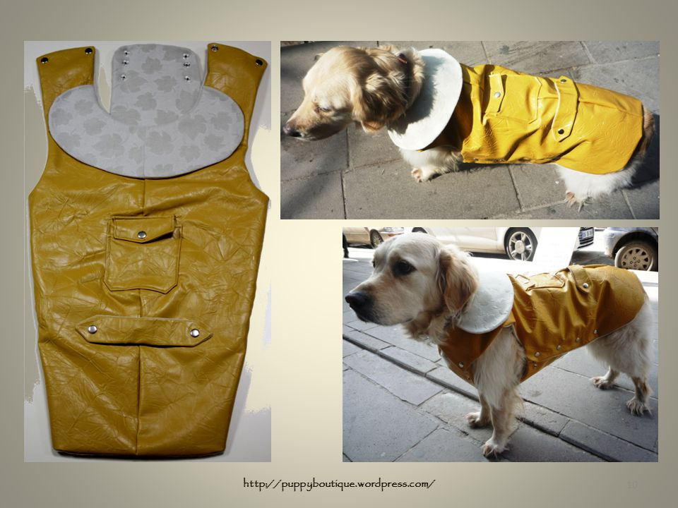10 http://puppyboutique.wordpress.com/