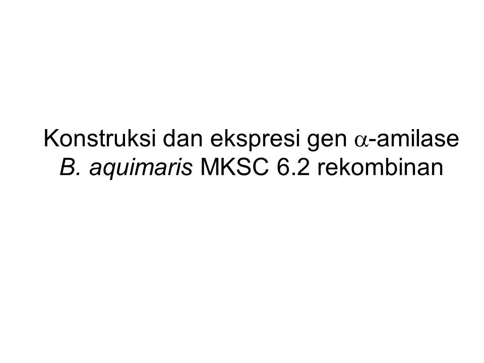 Konstruksi dan ekspresi gen  -amilase B. aquimaris MKSC 6.2 rekombinan