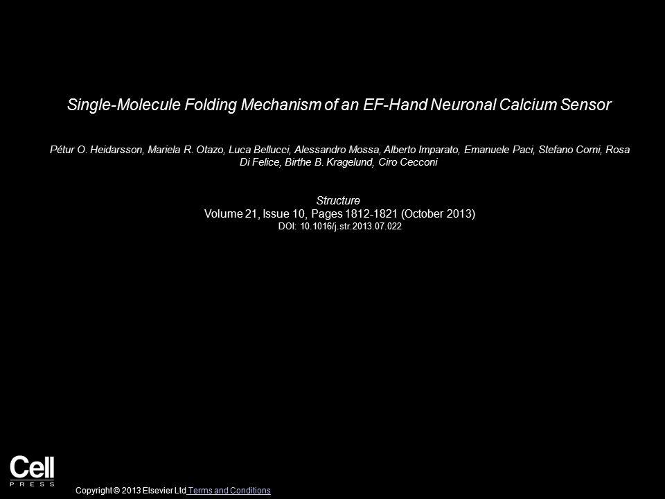 Single-Molecule Folding Mechanism of an EF-Hand Neuronal Calcium Sensor Pétur O. Heidarsson, Mariela R. Otazo, Luca Bellucci, Alessandro Mossa, Albert